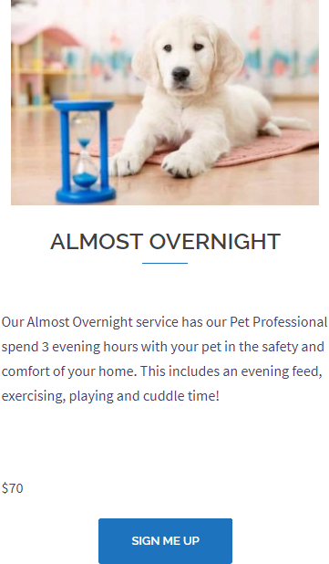 Almost Overnight Pet Care Services