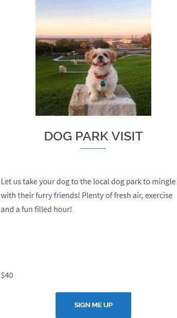 Dog Park Visit