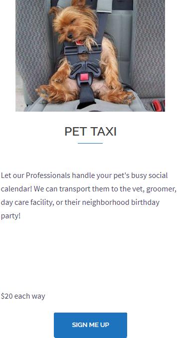 Professional Pet Taxi Service